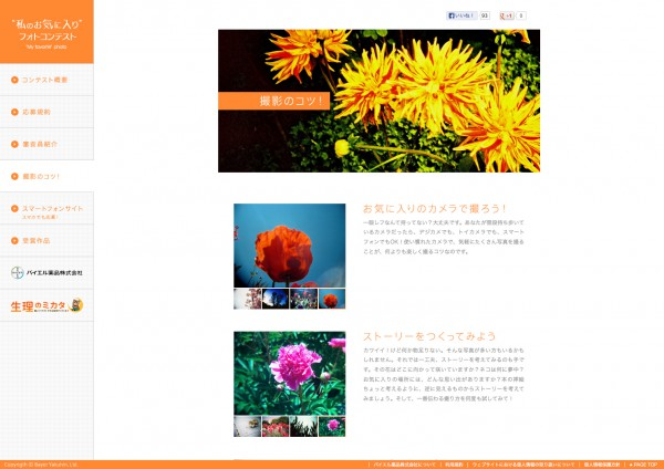 "Bayer ""My favorite"" photo contest Website 2012"