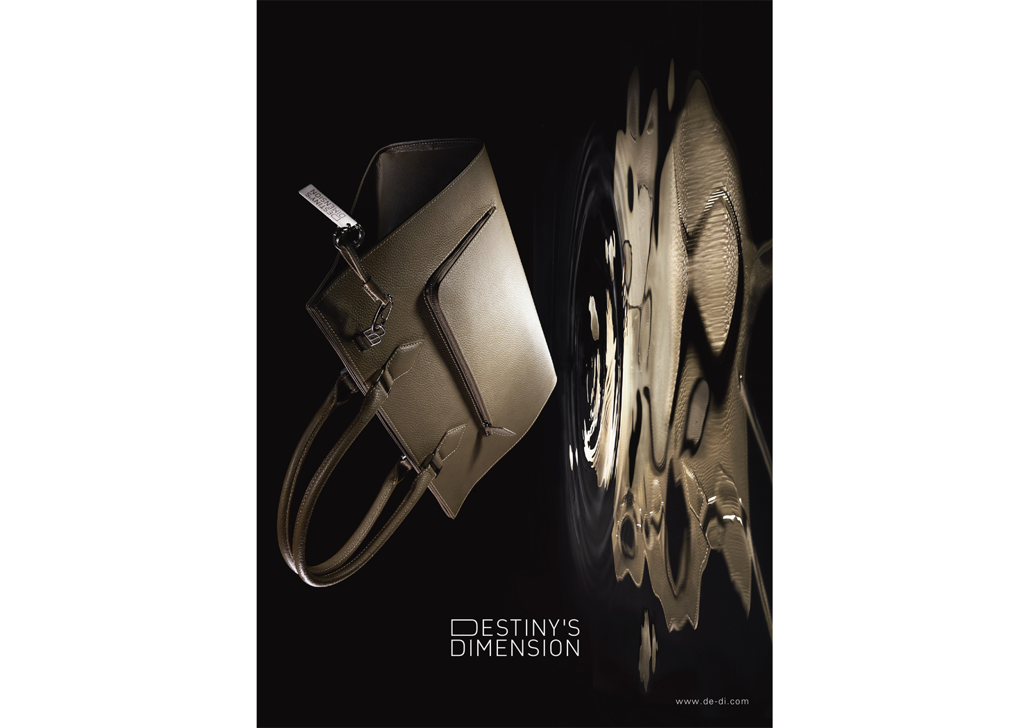 Destiny's Dimension Poster 2015